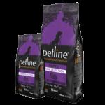 Petline Kids